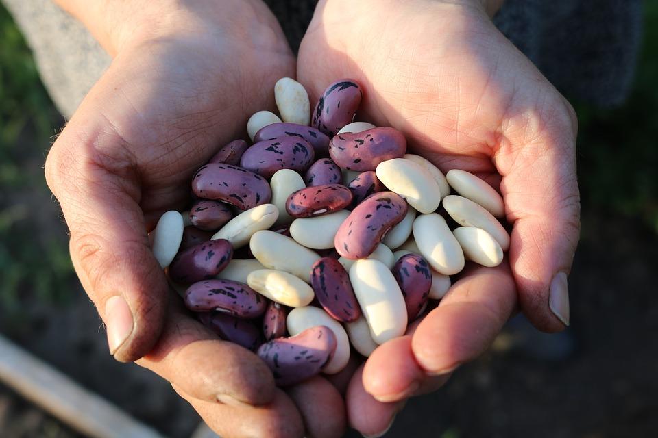 Las legumbres: Las grandes amigas de tu corazón